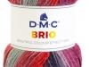DMC-Brio_cor-416