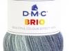 DMC-Brio_cor-417