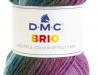 DMC-Brio_cor-418