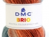 DMC-Brio_cor-420