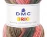 DMC_Brio_Cor 404
