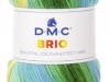 DMC_Brio_Cor 409